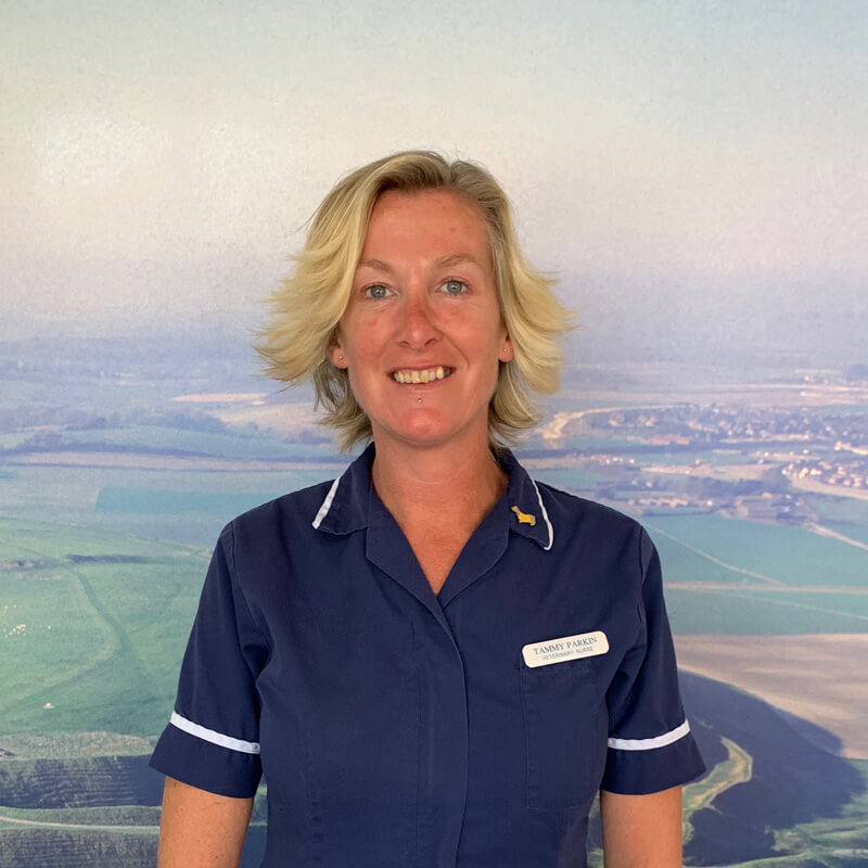 castle-vets-dorchester-weymouth-staff-tammy-parkin