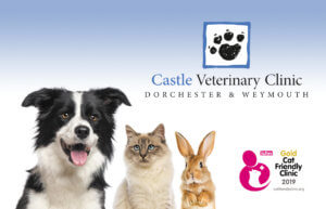 Join The Castle Club - Huge benefits for your pet, low monthly cost for you!