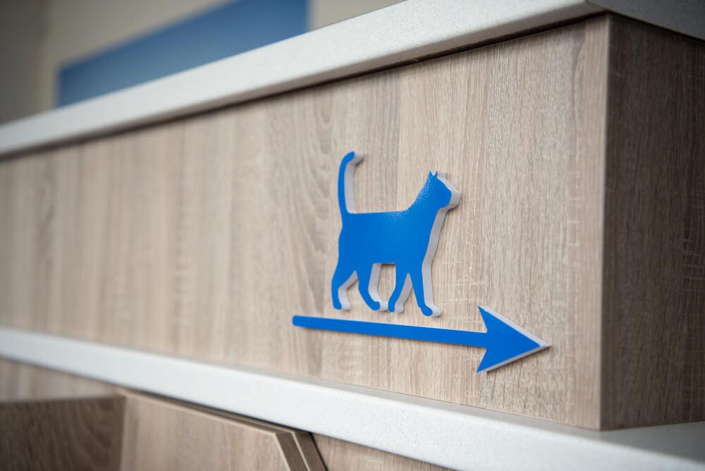 castle-veterinary-group-dorchester-cat-friendly-clinic-2