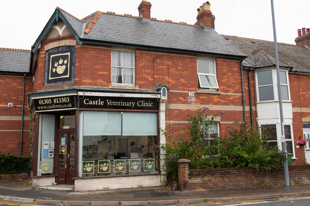 castle-veterinary-group-weymouth-practice-gallery-1