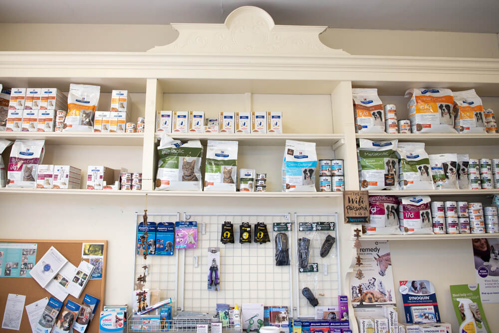 castle-veterinary-group-weymouth-practice-gallery-3